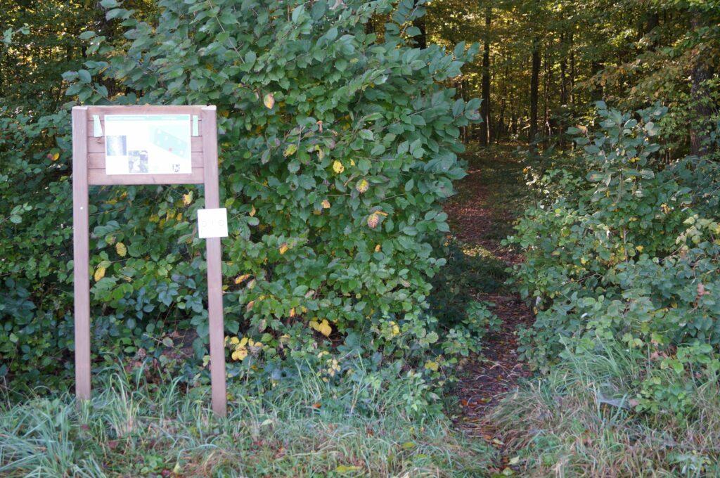 Nur anhand einer Eingangstafel merkt man, dass man sich in einem Friedwald befindet (Ermatingen TG).   © Detlef Kissner