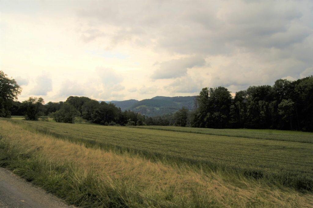 Von der Kapelle Albach bietet sich eine weite Aussicht ins Passwanggebiet. | © Fabienne Netzhammer