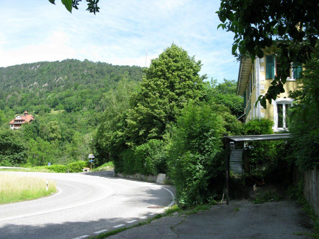 Zwei Häuser aus der Glanzzeit des Fremdenverkehrs in Waldenburg: Vom «Eden» aus ist am Gegenhang (links) das Kurhaus Schanz sichtbar. | © Christian von Arx